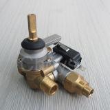 Valvola a gas della valvola di sicurezza (CH-PGV01A)