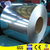 Dx51D+Z100 Painted Galvanized Steel Sheet in Coil