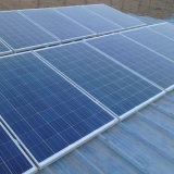 Зеленая панель солнечных батарей энергии 300W поликристаллическая