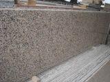 Tuile de granit du rose de Rose G563 et brame chinoises populaires de granit