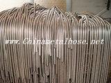Tube en métal Hose/Ss de vapeur de constructeur OEM/conduit métal flexible