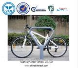 Premium Hotel를 위한 자전거 Parking Racks