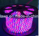 CE EMC LVD RoHS dos años de garantía, RGB LED Luz de la cuerda