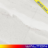 Baldosa cerámica del azulejo de suelo de la porcelana del material de construcción 600X600 (WR-IM6681)