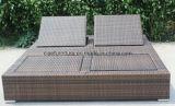 Outdooorの庭のプールの柳細工の二重Lounger (CF866L)