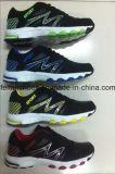 Marque de prix usine la diverse folâtre les chaussures de course de chaussures, espadrille de chaussures pour la vente en gros
