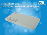 _Radio de RoIP 302m (função da reunião) sobre o Gateway do IP