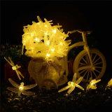يشعل [6م] 30 [لد] عيد ميلاد المسيح خيط شمسيّة 8 أساليب يعسوب