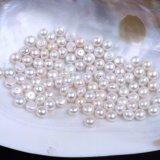 パンボタンの淡水の真珠の卸売の卸売の真珠