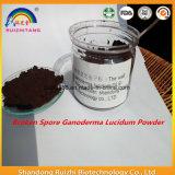 China Ganoderma Lucidum polvo de esporas para la salud del cuerpo