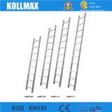 China vervaardigde Aluminium 3 Secties van de Ladder met Leuning