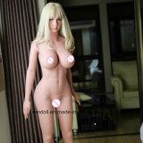 pista adulta japonesa de calidad superior de la muñeca del 168cm para el sexo oral de los hombres