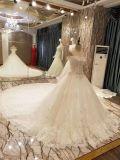 جديدة وصول 2017 علبيّة أميرة [مرّيج] [بوفّي] عرس ثوب