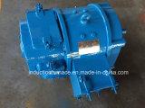 販売のための大きい品質0.4-200kw小さいDCの電動機