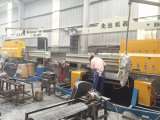 Granit-Lichtbogen-Platte-Poliermaschinen-/Grinding-Maschine PLC-Mable/Steinprozeßmaschine
