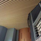 Form-Entwurfs-Qualitäts-Aluminiumstrangpresßling-Leitblech-Decke