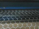 Galvanisiert und Kurbelgehäuse-Belüftung beschichtete sechseckige Draht-Filetarbeits-Rolle