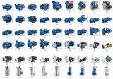 1.0HP 220V Plastikpumpenkörper-Garten-Wasser-Pumpe für Trinkwasser