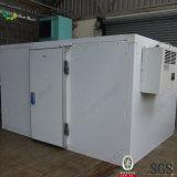 Oeuf frais Coldroom, une pièce plus froide, entreposage au froid avec l'énergie solaire