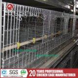 Gaiola de bateria A3l90 do engranzamento de fio da galinha