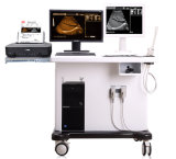 Ut-3018civ de Digitale Scanner van de Ultrasone klank van het Karretje met Werkstation