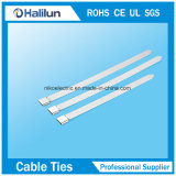 316 Banden van de Kabel van het Roestvrij staal van het Type van ladder de Enige Weerhaak Gesloten