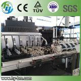 SGS de Automatische Blazende Machine van de Fles van het Huisdier 600ml