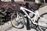 歩道のための2台のバイクラックループバイクのポスト