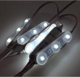 Modulo di Samsung 5630 DC12V LED con IP68 impermeabile