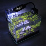 Бак аквариума рыб среднего размера высокого качества стеклянный