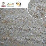 Reticolo floreale fragile e bello in rilievo 2017 C30003 del tessuto del merletto di Polyster della maglia,