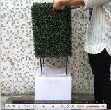 인공적인 회양목 옥외 사용 Atificial 산울타리