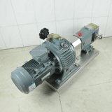 Hochtemperaturwiderstand-Drehvorsprung-Pumpe