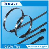 Aile d'acier inoxydable en métal verrouillant le serre-câble avec l'enduit