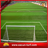 Самое лучшее продавая Plastic Спорты Artificial Grass for Ковер травы футбола