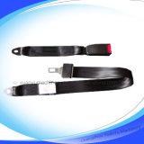 einfacher 2-Point Sicherheitsgurt für Selbstsitz (XA-001)