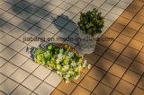 Mattonelle di ceramica esterne di Decking del pavimento