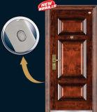 Стальная дверь входа с переходом хорошего качества и поверхности