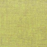 Cuoio verde del PVC della mobilia di disegno del panno