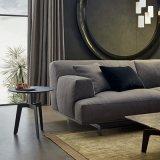 Sofà del tessuto di disegno moderno della mobilia del salone (F629-12-1)