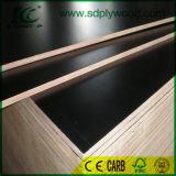 El material de construcción de la película hizo frente a la madera contrachapada para el proyecto de construcción