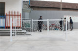 Balcon en acier galvanisé décoratif de haute qualité 12 de clôture d'alliage de Haohan Alluminum