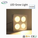 2017-Bestselling LED si sviluppano chiari con i chip del CREE per le piante d'appartamento