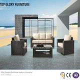 Insiemi esterni del rattan della mobilia del patio e del sofà del giardino (TG-804)