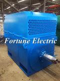 Aufgabe 2 Pole-S1 3 Phase elektrischer Wechselstrommotor-Preis
