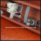 木のベニス風のHeadrailボックスSgdC 3202