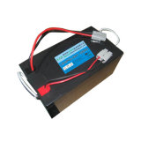 24V 100ah Deep Cycle LiFePO4 Battery für Electric Boat