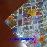 Tissu en plastique conçu coloré de Tableau de PVC