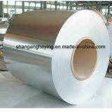 Bobina de /Ss da bobina do aço 316L inoxidável de Manufatory 304 para a cozinha