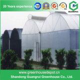 農業のための熱い販売のプラスチックフィルムの温室